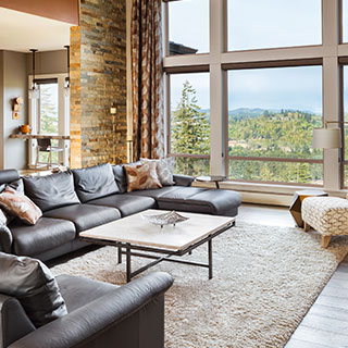 Lake Zurich Living Room gallery